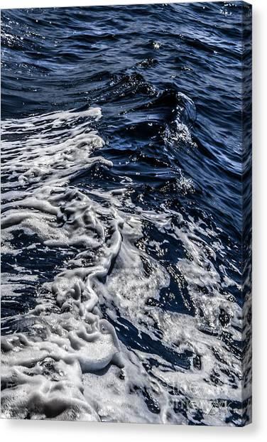 Sea6 Canvas Print