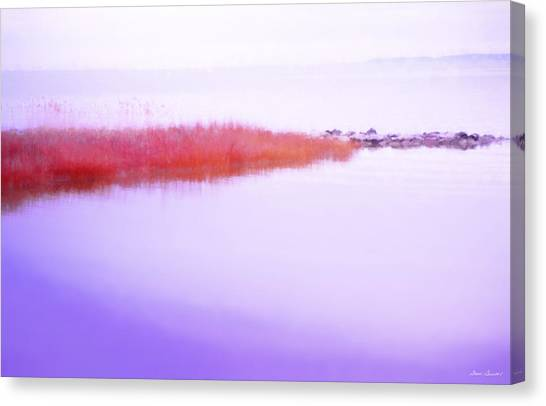 Seagrass Sandbar Canvas Print