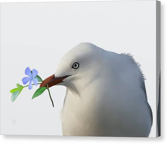 Canvas Print featuring the painting Seagull by Ivana Westin