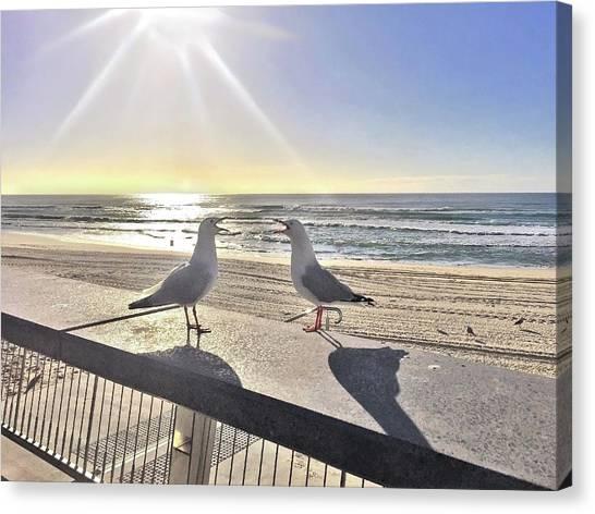 Seagulls Canvas Print - Seagull Sonnet  by Az Jackson