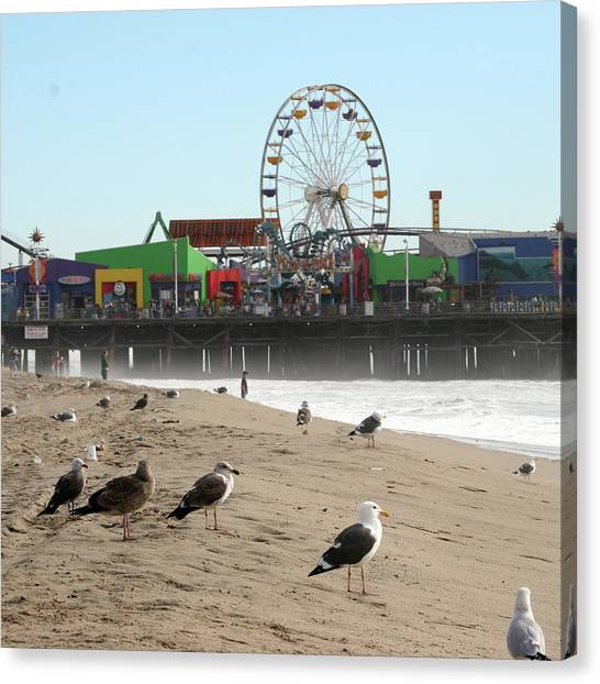 Seagulls And Ferris Wheel Canvas Print