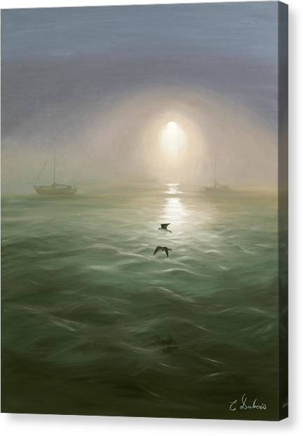 Seagulls In The Mist Canvas Print