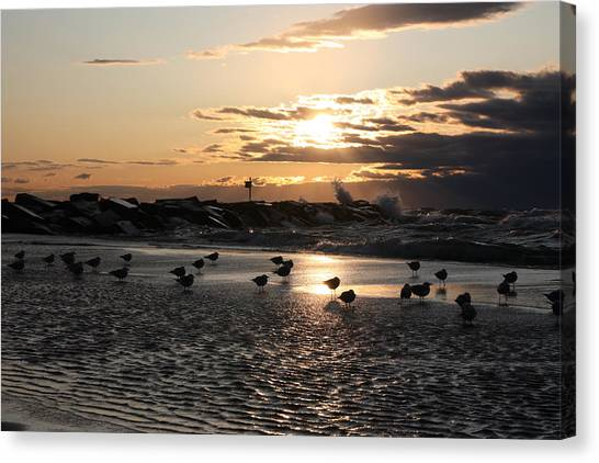 Seagulls In The Surf At Sunset Canvas Print by Christopher Purcell