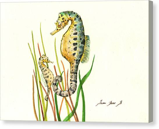 Seahorses Canvas Print - Seahorse Mom And Baby by Juan Bosco