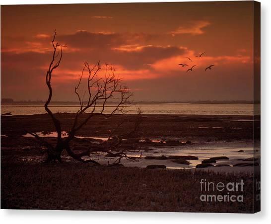 Seashore At Dawn Canvas Print