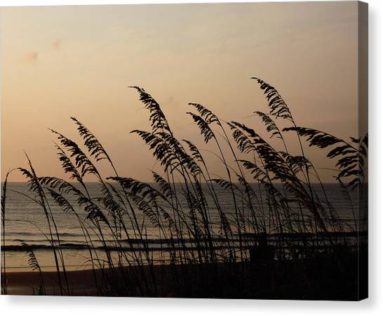 Seaside Guardians Canvas Print by JAMART Photography