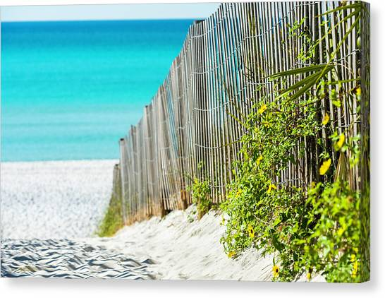 Seaside Wildflower Sand Fence Canvas Print