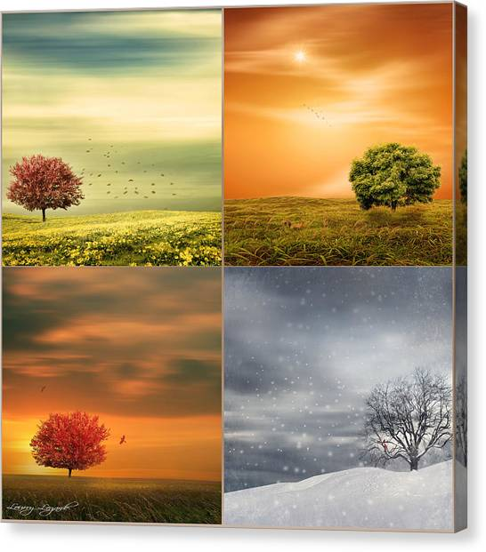 Seasons' Delight Canvas Print