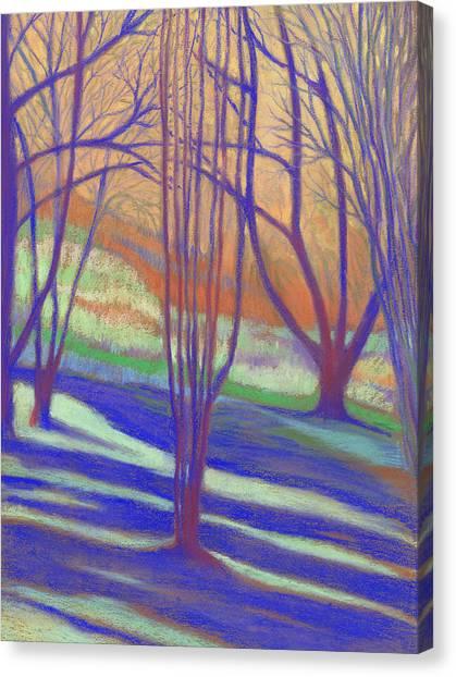 Seattle Arboretum Canvas Print