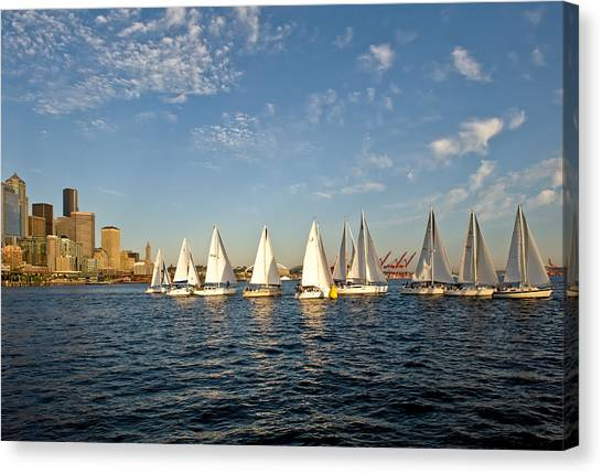 Seattle Sailboat Race Canvas Print by Tom Dowd