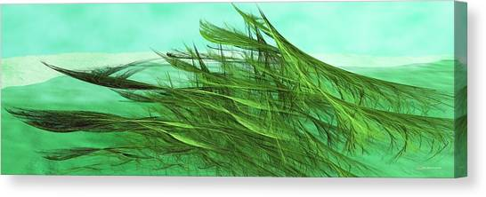Seaweed Moves Canvas Print