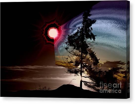 Sechelt Tree Stardust Canvas Print
