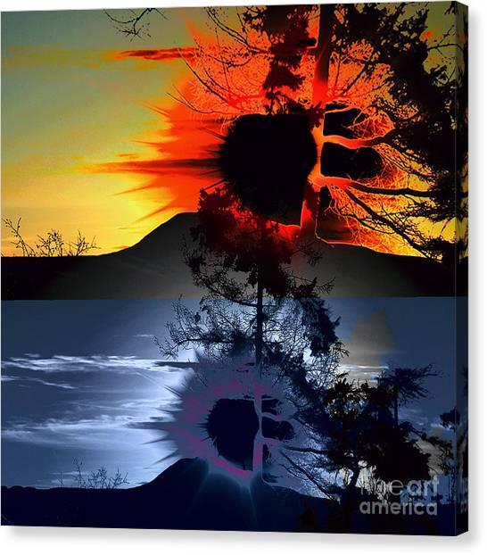 Sechelt Tree Sun And Moon Canvas Print