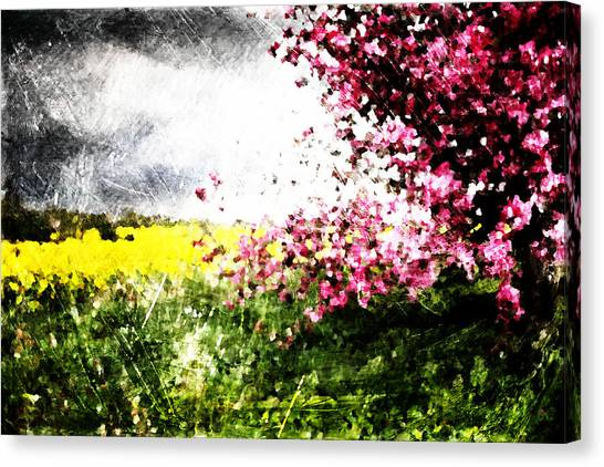 Secret Garden Canvas Print by Andrea Barbieri