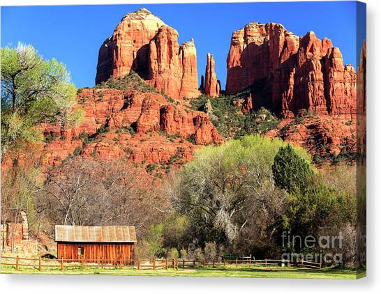 Cathedral Rock Canvas Print - Sedona Cathedral Rock  by John Rizzuto