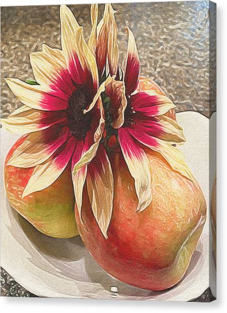 Still Life Canvas Print - Seeing Double by Michele Meehl