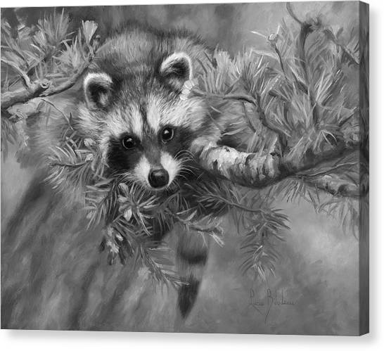 Raccoons Canvas Print - Seeking Mischief - Black And White by Lucie Bilodeau