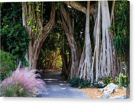 Selby Secret Garden 2 Canvas Print