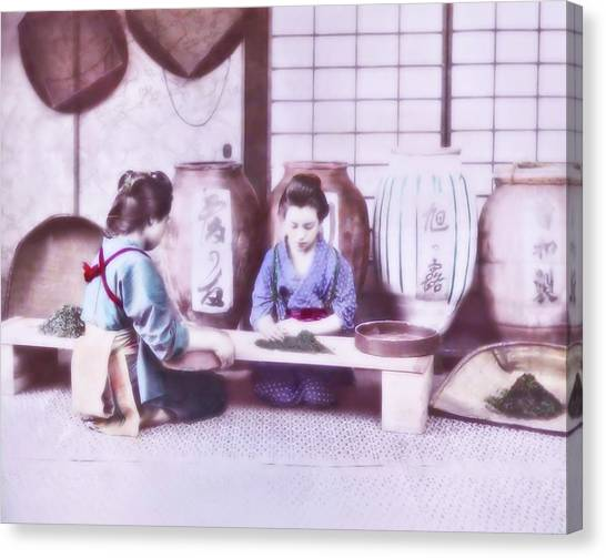 Selecting Tea Canvas Print