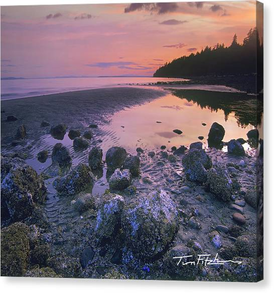 Semiahmoo Bay Canvas Print