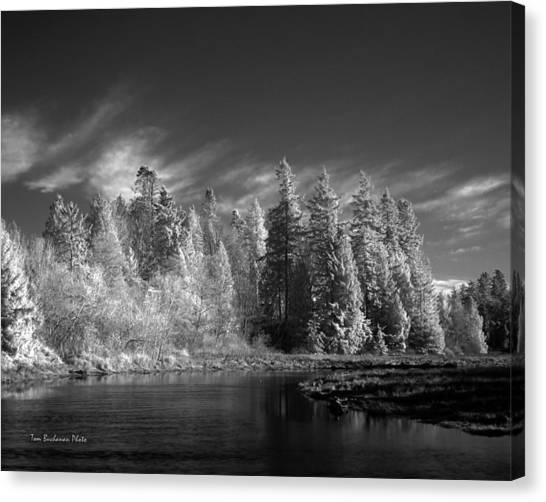 Semiahmoo River Canvas Print by Tom Buchanan