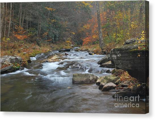 Seneca Creek Autumn Canvas Print