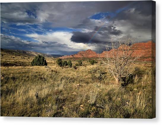 Arizona Coyotes Canvas Print - Sense Of Oneness by Gary Yost