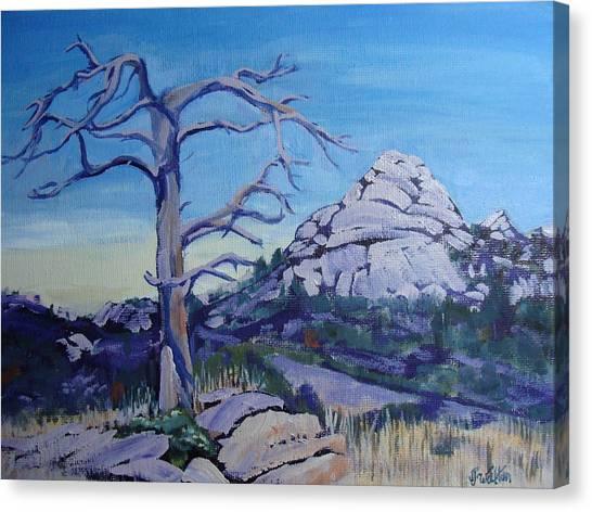 Sentinel Canvas Print by Judy Fischer Walton