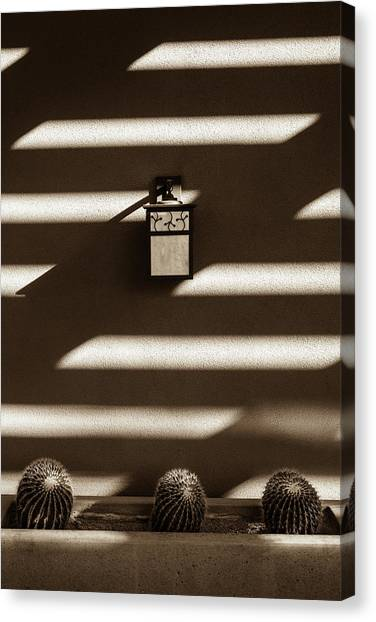 Sepia Stucco Shadows Canvas Print