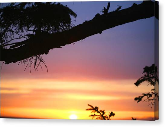 Sequim Sunset Ss 2007 Canvas Print by Mary Gaines