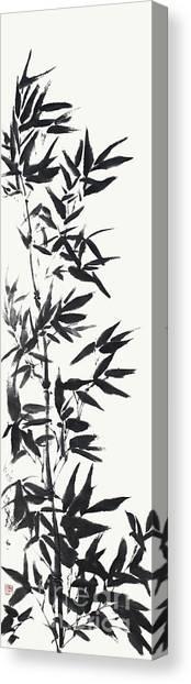 Serene Bamboo Canvas Print by Nadja Van Ghelue