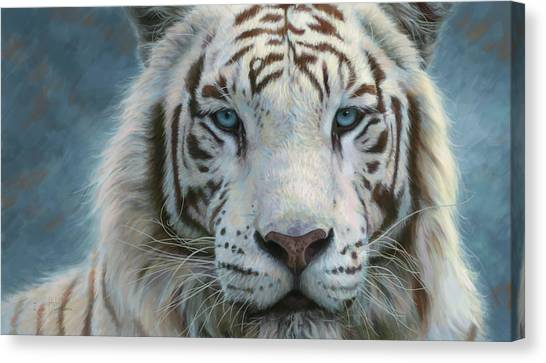 Bengals Canvas Print - Serene Emperor by Lucie Bilodeau