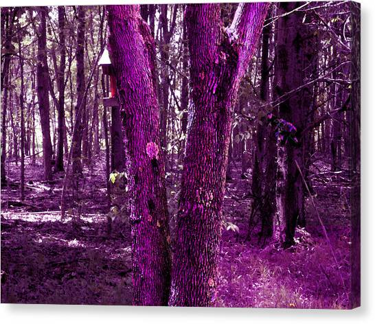 Canvas Print featuring the photograph Serene In Purple by Michelle Audas