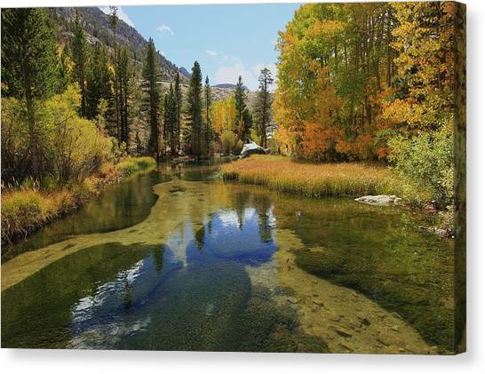 Canvas Print featuring the photograph Serene Stream by Sean Sarsfield