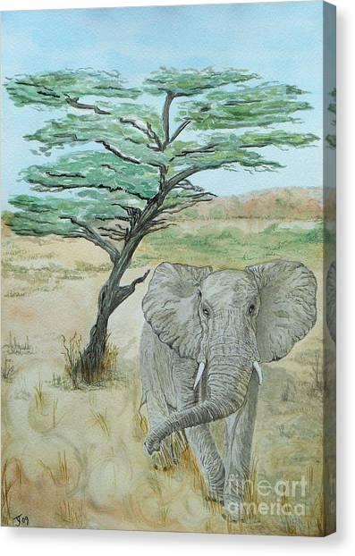Serengeti Elephant Canvas Print by Yvonne Johnstone