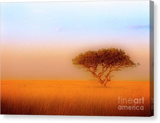 Canvas Print featuring the photograph Serengeti by Scott Kemper