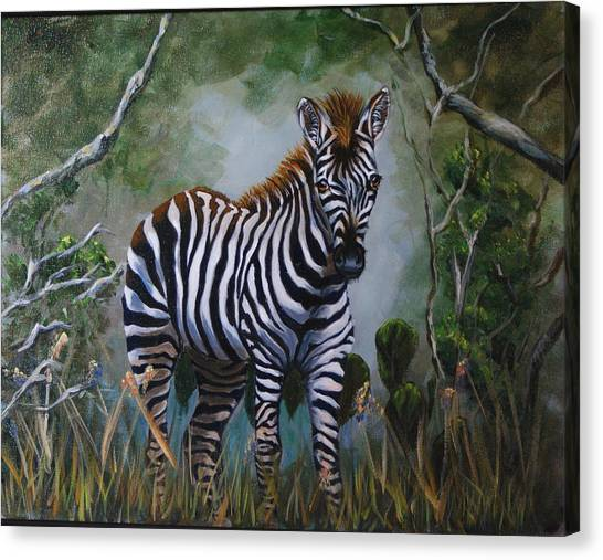 Serengeti Zebra Canvas Print