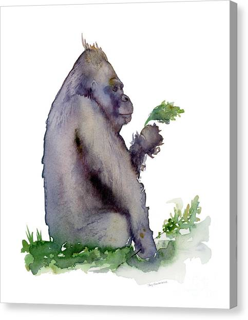 Gorillas Canvas Print - Seriously Speaking by Amy Kirkpatrick