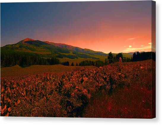Setting Sun In Crested Butte Canvas Print