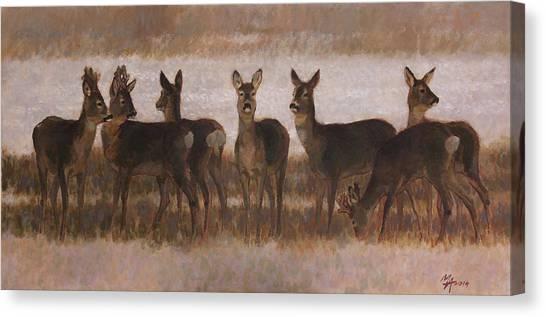 Seven Roe Deers Canvas Print