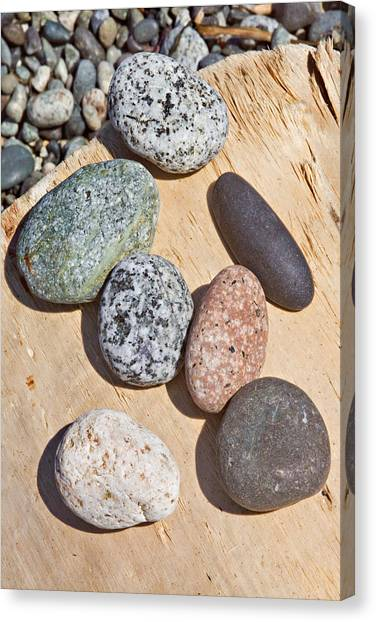 Seven Stones On A Log Canvas Print