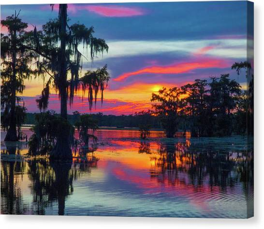Swamp Sexy Canvas Print