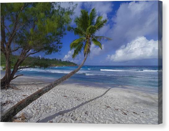 Seychelles Beach Canvas Print