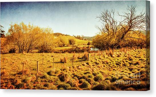 Grove Canvas Print - Shabby Country Farmland by Jorgo Photography - Wall Art Gallery