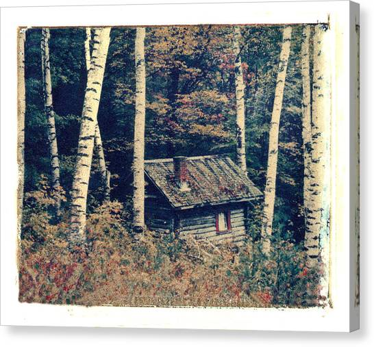 Shack And Birch Trees Canvas Print