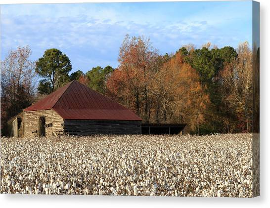 Shack In The Field Canvas Print