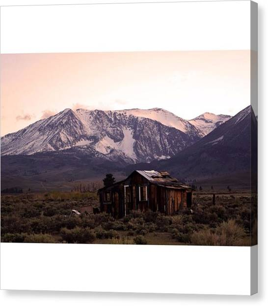 Scotty Canvas Print - Shack In The Tioga Pass #photography by Scotty Brown