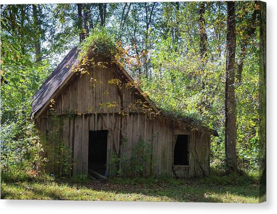 Shack In The Woods Canvas Print