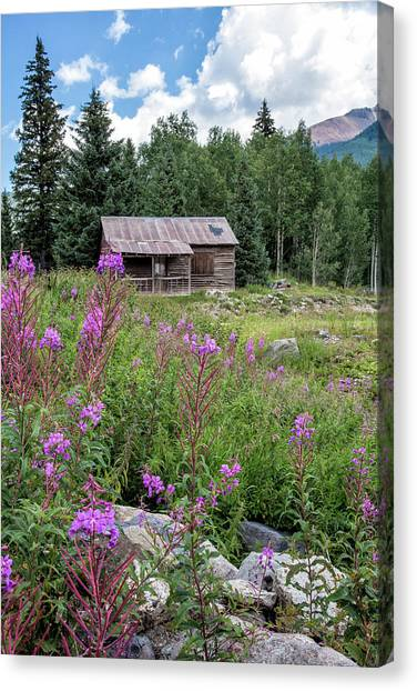 Canvas Print featuring the photograph Shack With Fireweed by Denise Bush