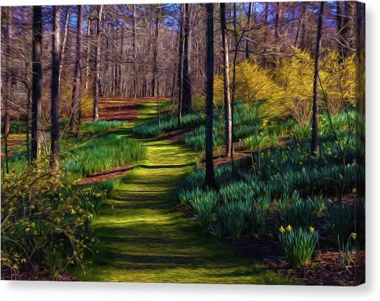 Shaded Spring Stroll Canvas Print